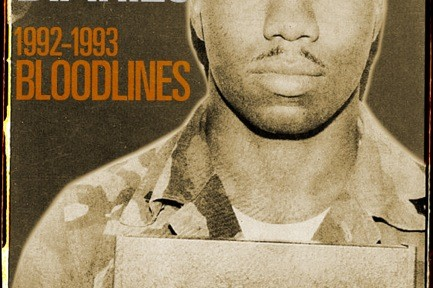 The Mogadishu Diaries: Bloodlines-Book Cover