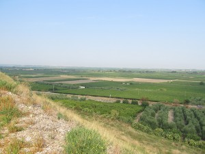 View over the plain (Battlefield) from the Memorial column. The area is still used for the same type of agriculture as two millennia ago