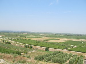 View over the plain from the northeast corner of the site